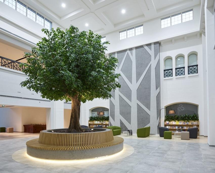 Bố trí cây xanh trong nhà xu hướng mang đến sự thú vị cho không gian